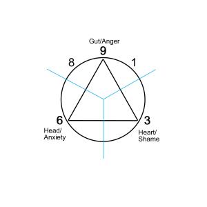 gut triad 8-9-1